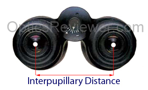 How to Choose Binoculars with correct interpupillary distance